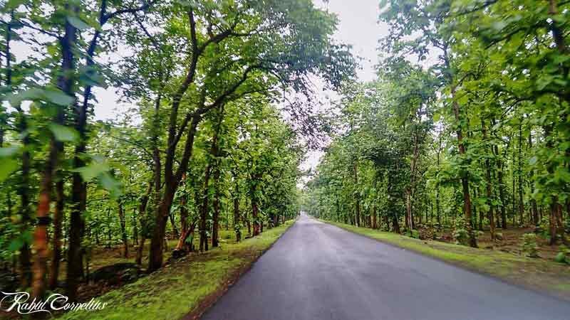 Punjapura-Ghat-Near-Indore---IndoreHD