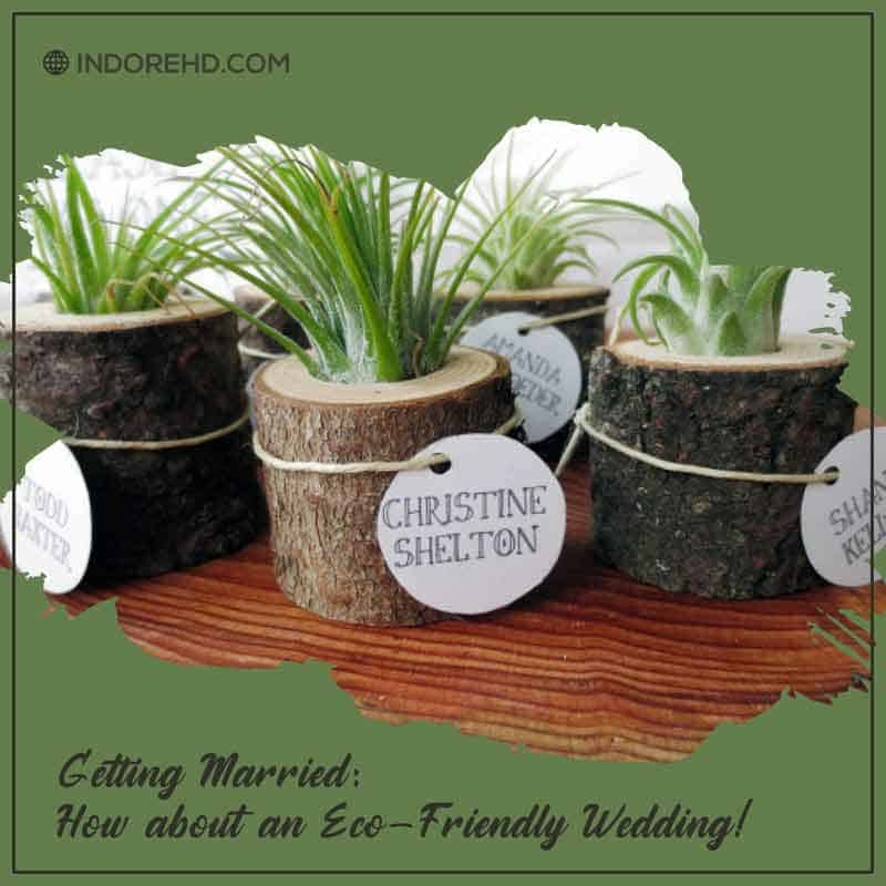 gift-plants-Eco-friendly-wedding-indorehd