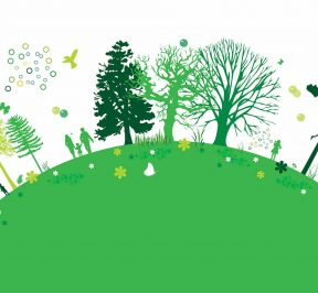 10 Steps Towards Green Indore