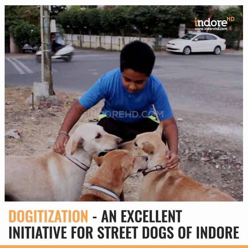 dog welfare