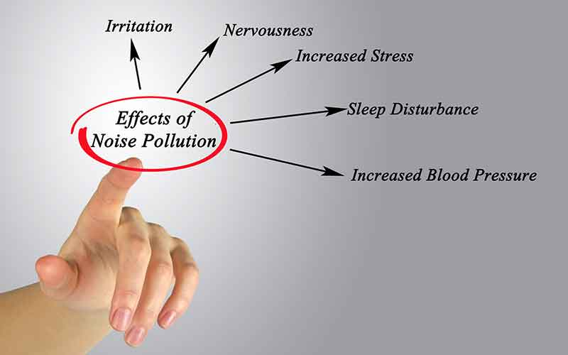 effects of noise pollution- IndoreHD